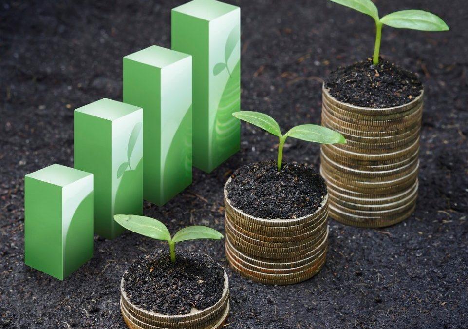GREEN RETAIL EVOLUTION | 10 anni di GreenRetail Forum
